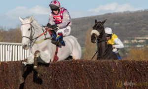 Smad-Place-Horse-Racing-Cheltenham-Gold-Cup